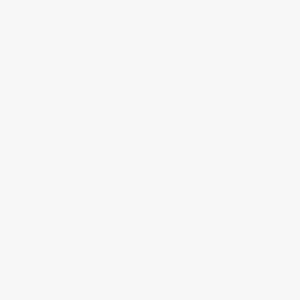 Eero Saarinen White Tulip Arm Chair - Blue Cushion